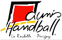 Logo equipe domicile TAC - AUNIS HB LA ROCHELLE PERIGNY